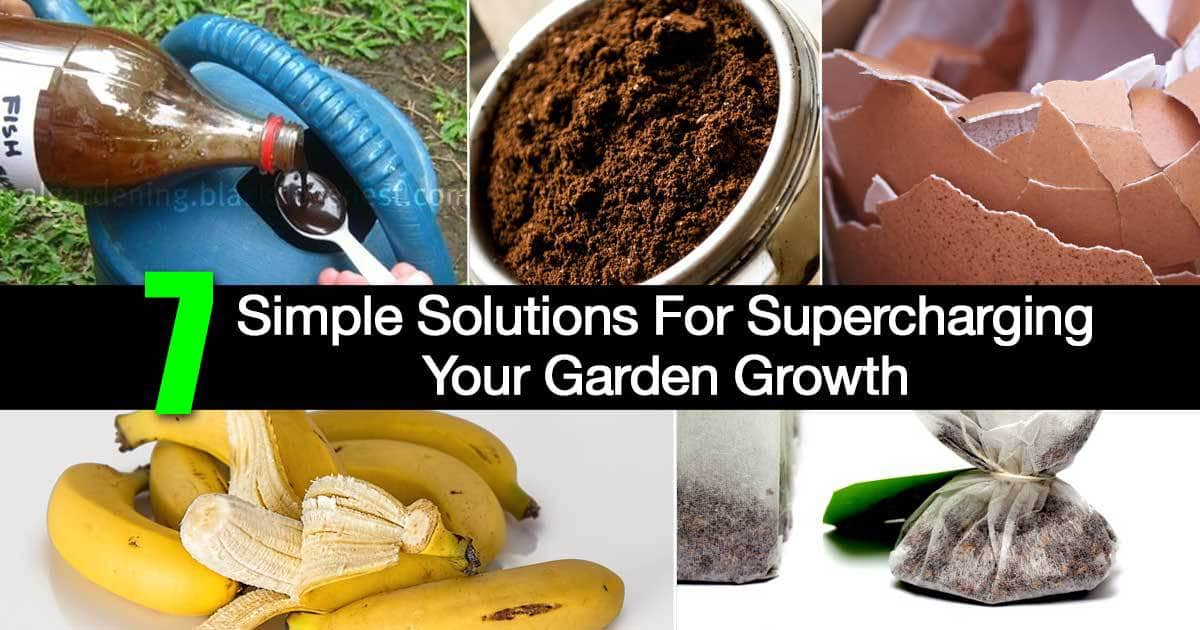 7 Simple Solutions For Supercharging Your Garden Growth
