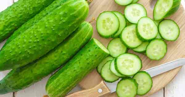 Is Cucumber A Fruit Or Vegetable? Not a [SIMPLE] Answer