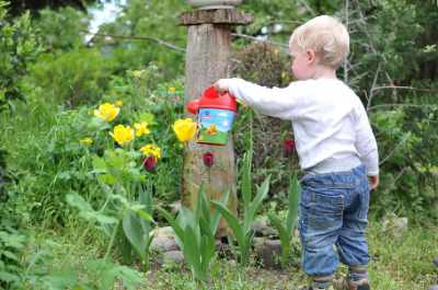 11 Ways to Protect Your Garden in Harsh Summer Weather