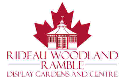 Rideau Woodland Ramble