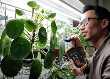An Engineer's Approach to Houseplant Care